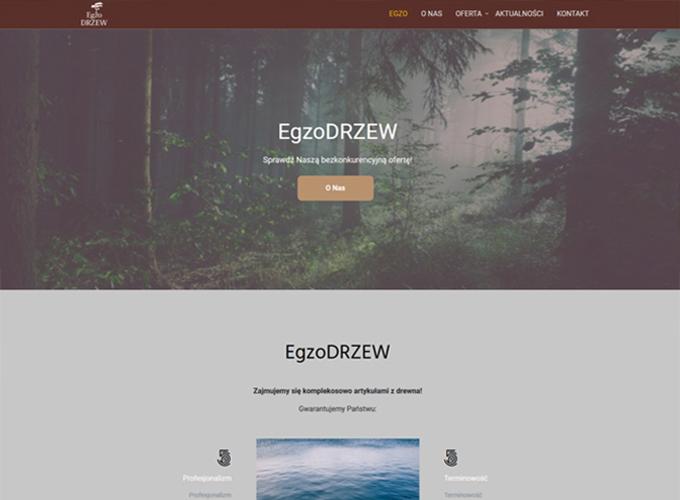 strony www kielce - apsolution.pl - egzodrzew